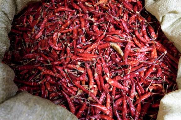cobalt_state_myanmar_bagan_market_chili