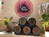 Wine barrels in the entrance to Cabo Wabo in Cabo