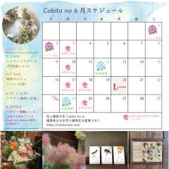 6月カレンダーtop