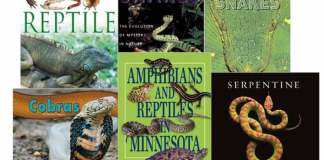 Reptile and Snake Books