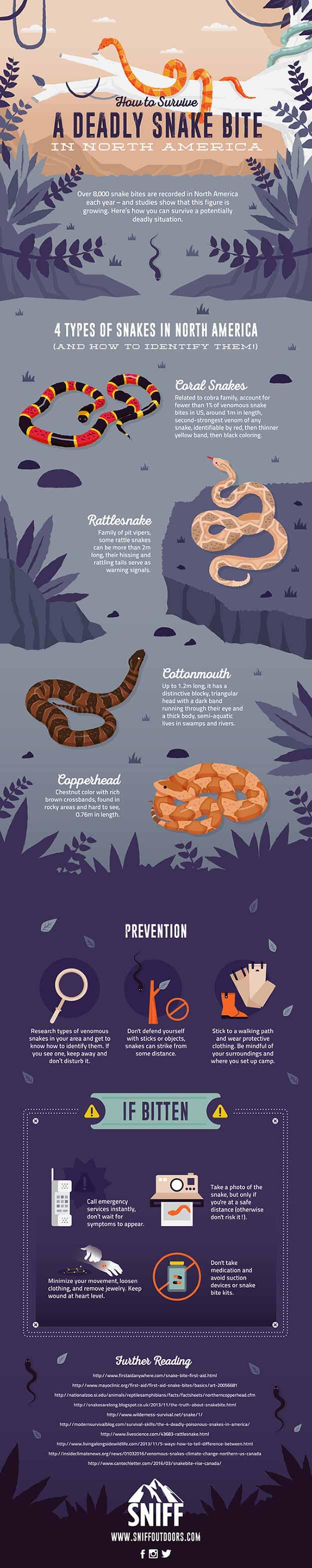 deadly snake bite