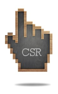 Council on Business & Society CSR