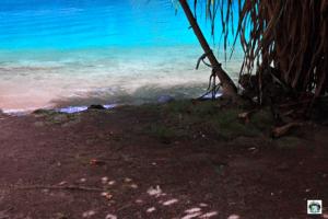 Blue Lagoon Giamaica