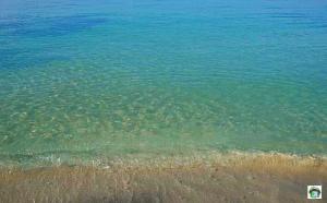Mare Giamaica