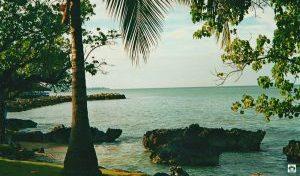Sea Palms Ocho Rios