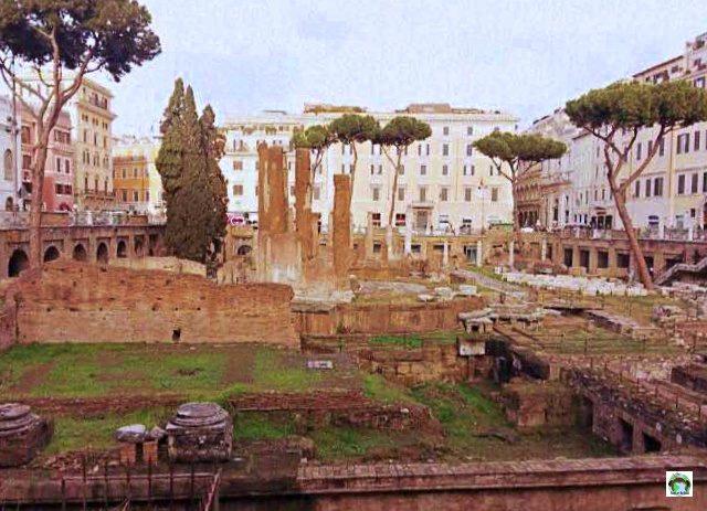 Roma Foro romano - Cocco on the road
