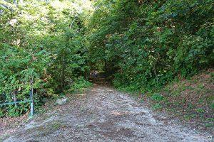 Sentieri sul Monte Maddalena