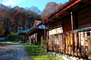 Villaggio Cimbro sul Pian del Cansiglio - Cocco on the road