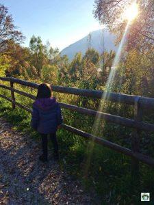 La natura al Parco del lago Santa Croce - Cocco on the road