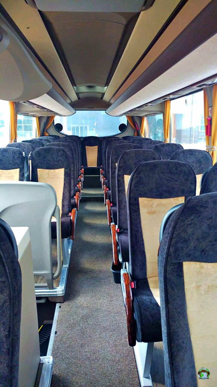 Flixbus L'interno - Cocco on the road