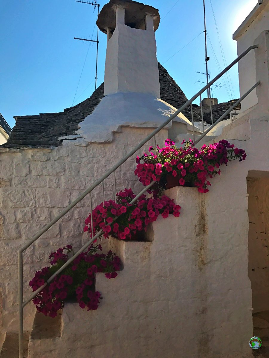Bari cosa vedere Trullo Alberobello - Cocco on the road