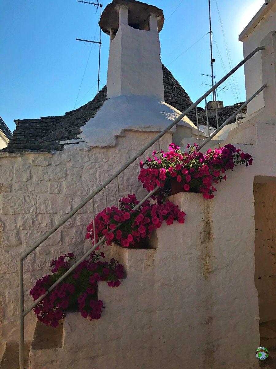 Bari cosa vedere Trullo Alberobello - Cocco on the road