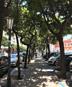 Viale alberato di fronte a Corso Cavour a bari