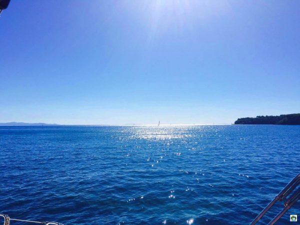 Cosa vedere isola d'Elba