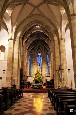 Duomo di San Martino la navata - Cocco on the road