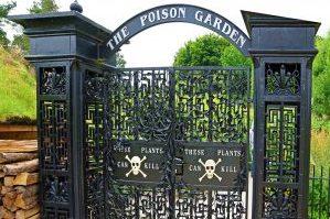 Il giardino dei veleni cosa vedere