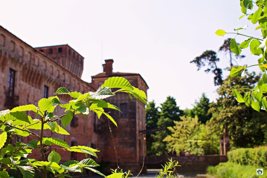 Castello di Padernello e la natura - Cocco on the road