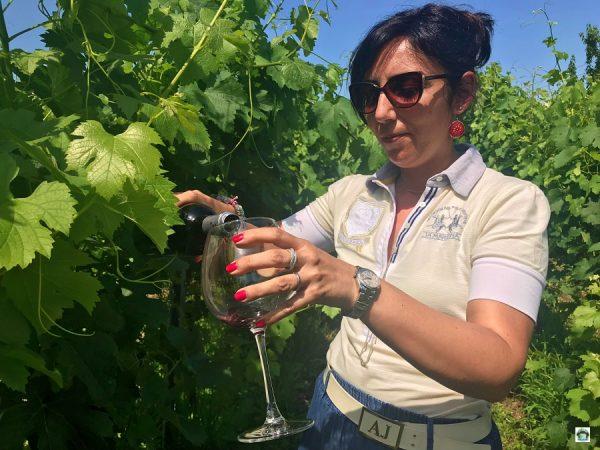 Degustazione Vino in Brianza