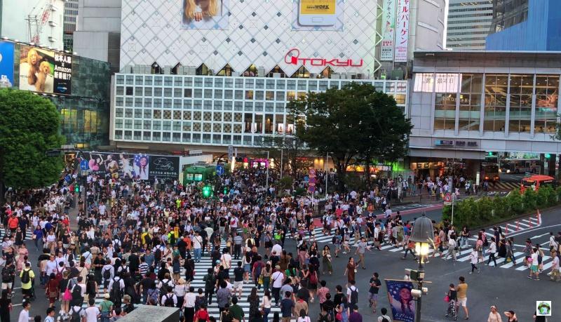 Tokyo cosa vedere in 3 giorni Shibuya Crossing