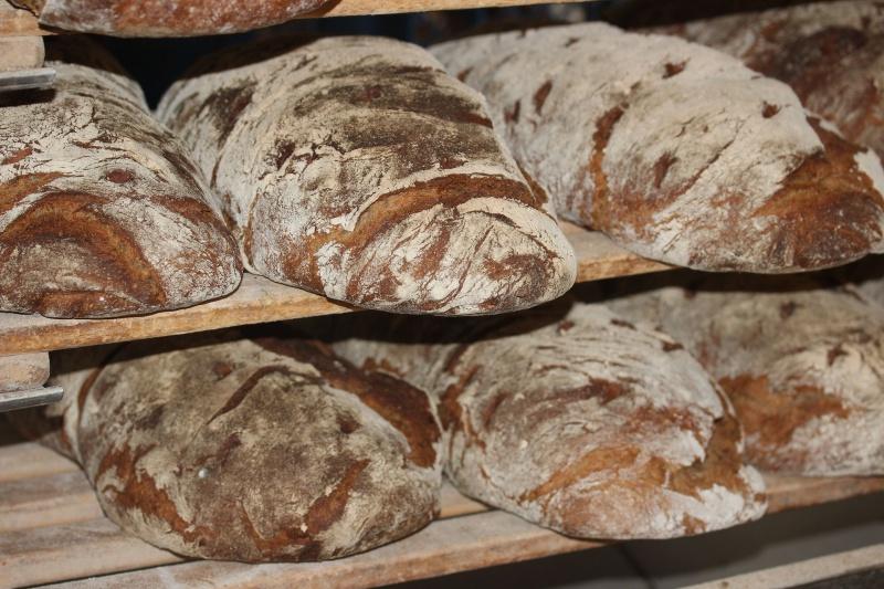 Quale pane scegliere