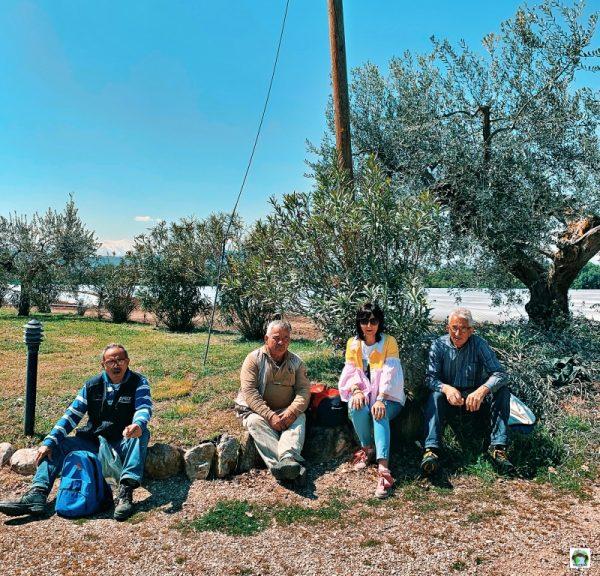 ulivi Borgo Spoltino Abruzzo