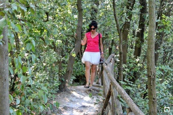 bosco Conero
