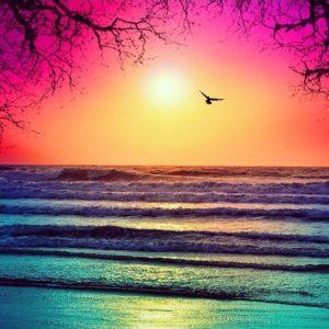 Ocean Sunset photot 2