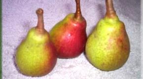 Peras en escabeche