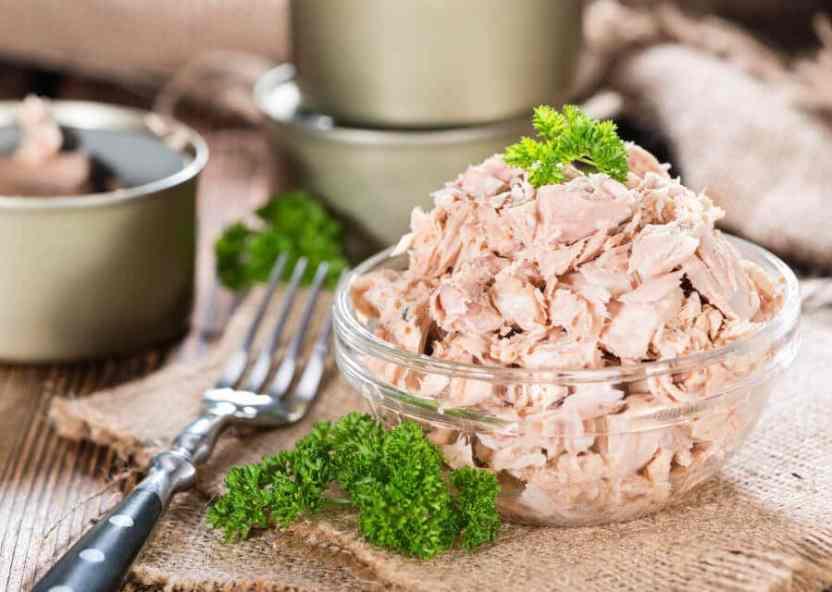 9 recetas fáciles y económicas para cocinar con atún en conserva ...
