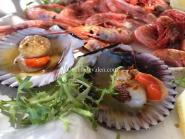 Gastronomía Valenciana - Cocina de Valen
