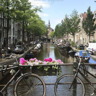 Comer en Amsterdam, descubre la ciudad de los canales