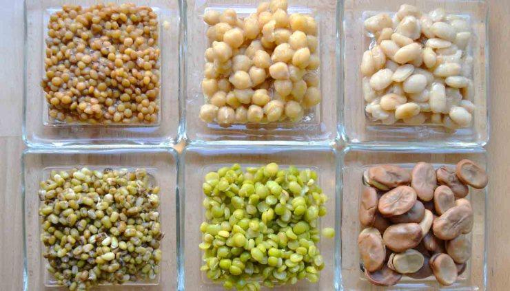 ¿Cómo cocer legumbres? Trucos y consejos