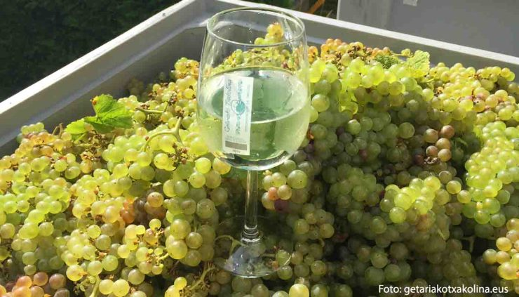 Denominaciones de origen de vinos de Euskadi o País vasco - vinos de España