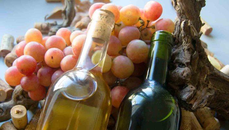 ¿Qué es la acidez de los vinos?