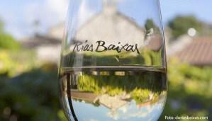 Denominación de origen Rías Baixas, tierra de albariño: uvas y características de sus vinos - vinos de España