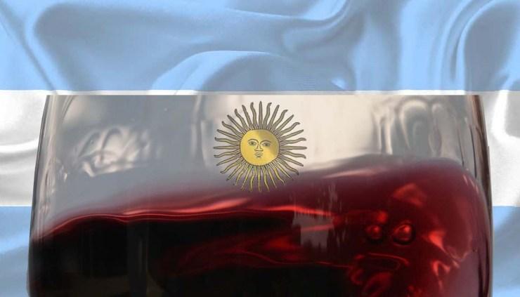 Vinos argentinos: características, variedades de uvas y zonas de produccion