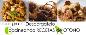 Cocineando recetas de otoño: libro e-book de cocina gratuito en PDF - descarga gratuita de libros de cocina