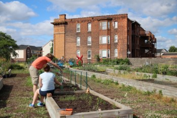 Urban agriculture in Midtown