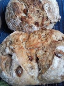 paine nuci smochine