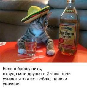 Домашняя водка Тимыч. Рецепт приготовления