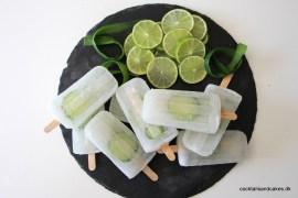 Opskrift på Gin tonic is