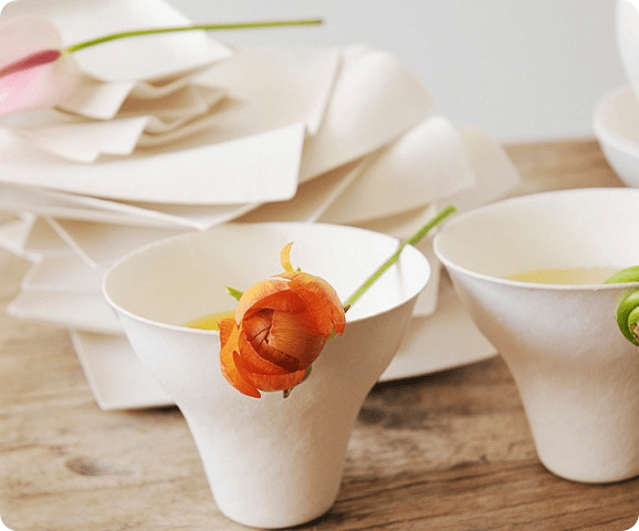beautiful white wasara cups