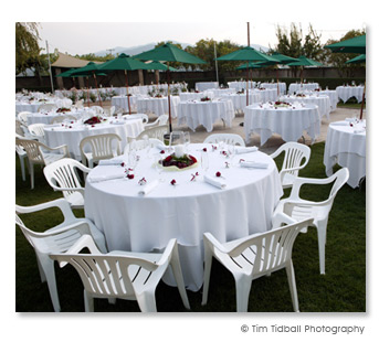 white wedding wedding reception
