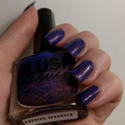 eveningsparkler (4)