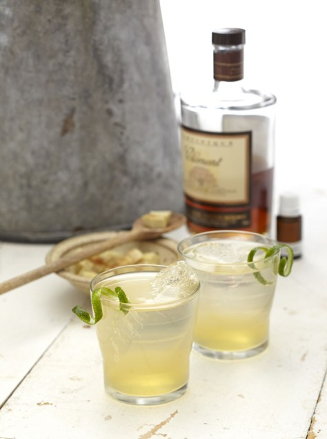 Ginger-Lime-Shrub