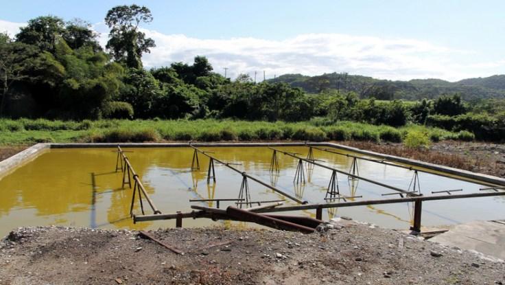 Spray pond at Long Pond distillery