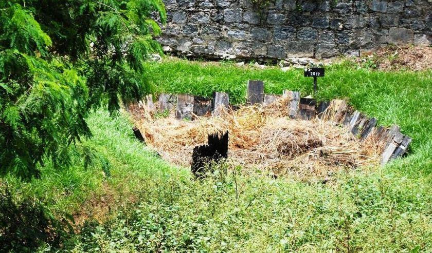 Muck grave at Hampden Estate. Photo courtesy of Dan Biondi