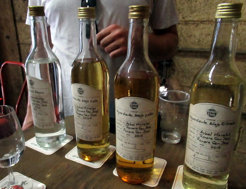 Base rums, before and during aging, and after filtration, Havana Club San José distillery