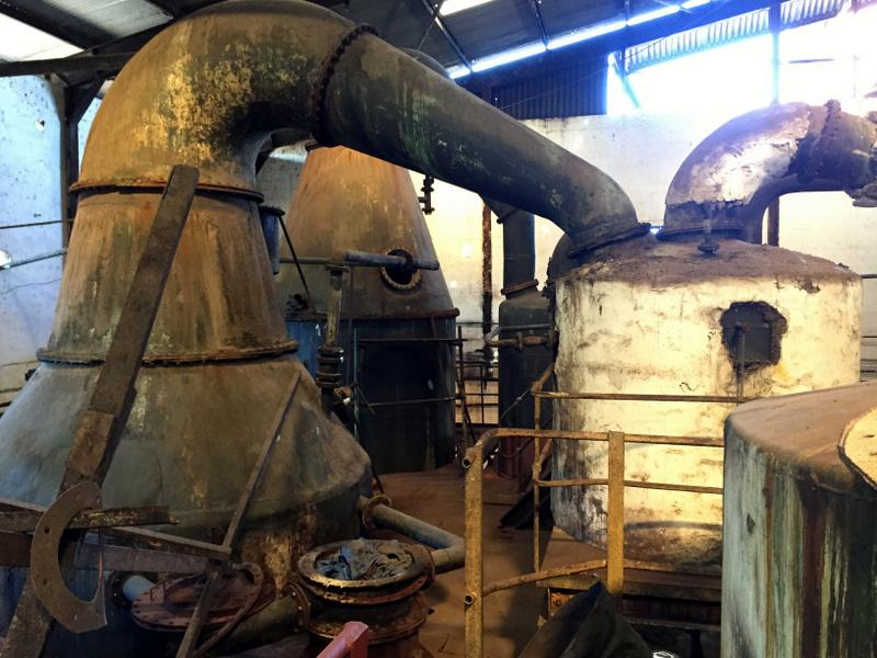 Jamaica's Long Pond distillery