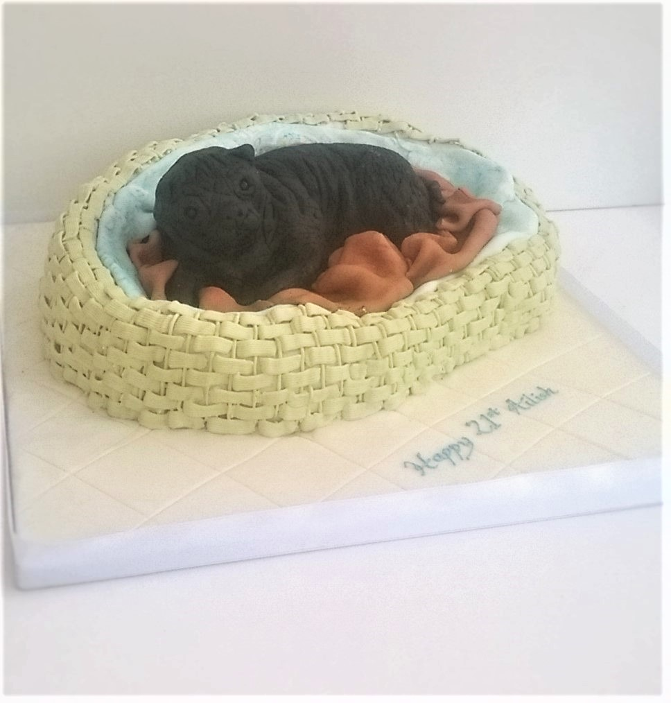 Party cake in the shape of a pug in a basket